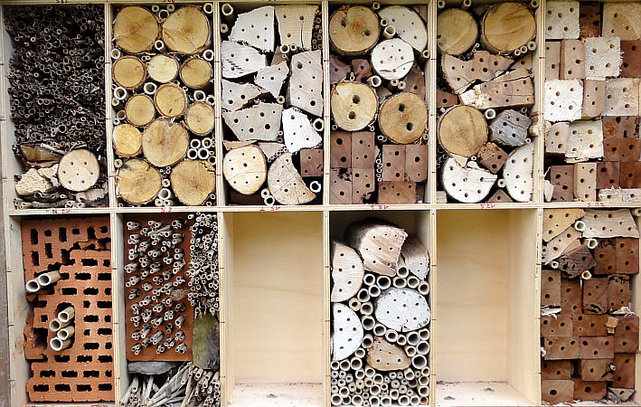 insektenhotel garten wildbienen insekten makro foto. Black Bedroom Furniture Sets. Home Design Ideas